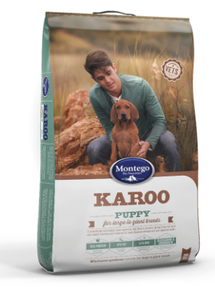 montego-karoo-large-to-giant-breed-puppy