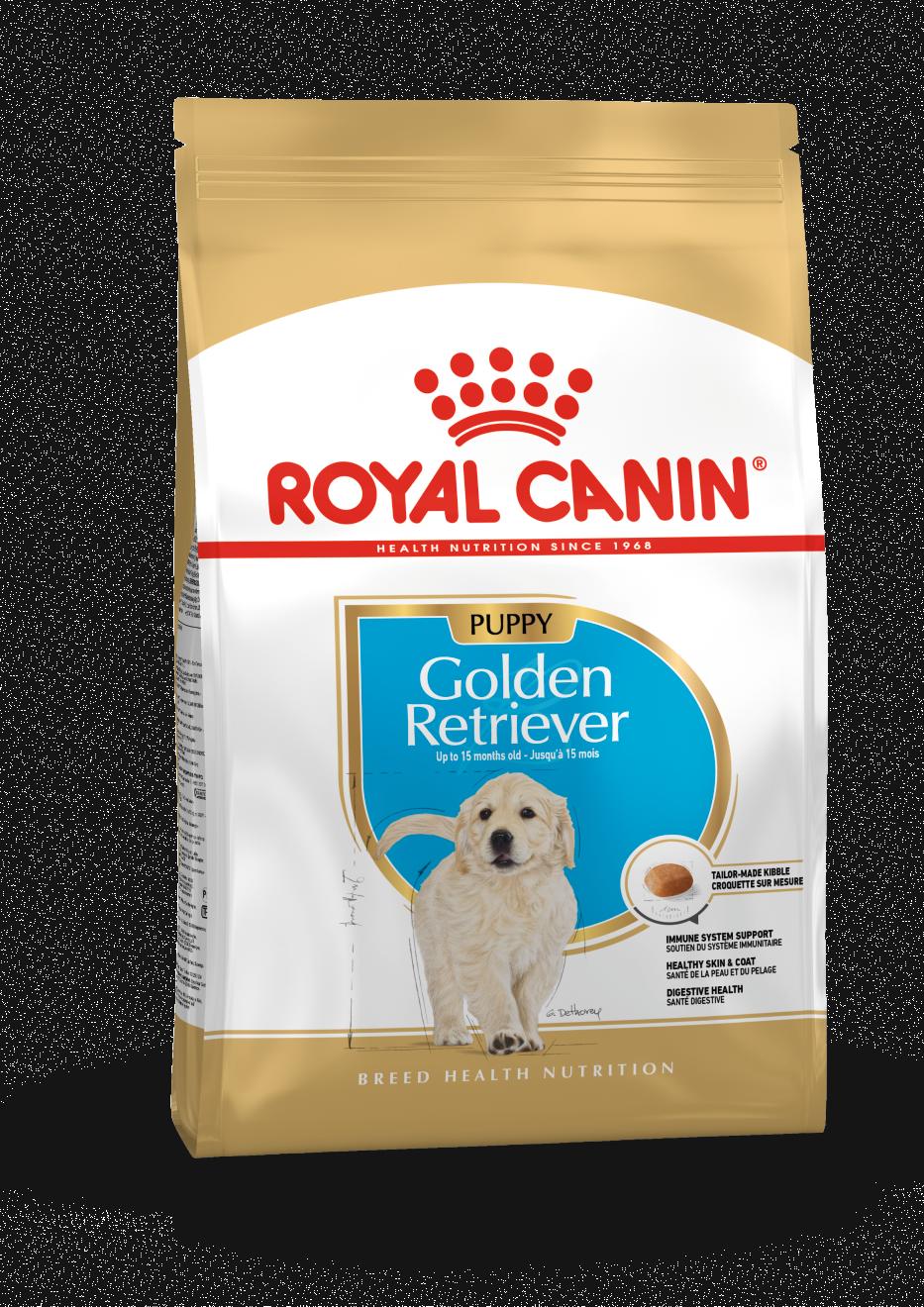 rc-golden-retriever-puppy-12kg