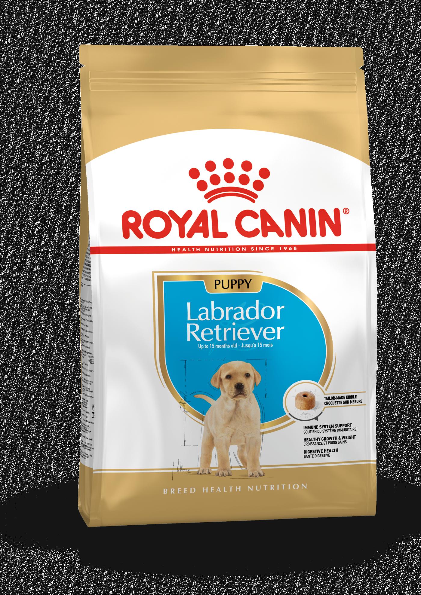 rc-labrador-retriever-puppy-12kg