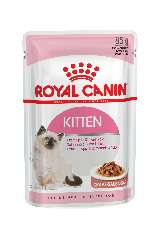 rc-kitten-12-x-85g