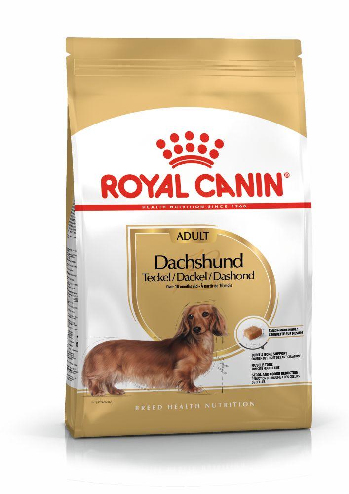 rc-dachshund-adult-15kg
