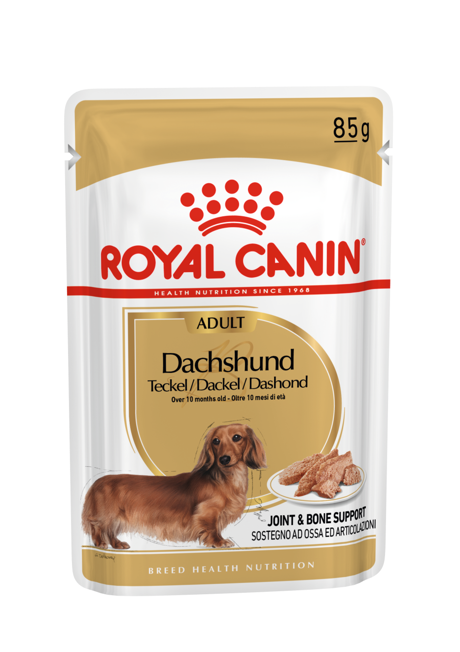 rc-dachshund-12-x85g