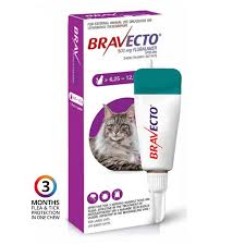 bravecto-cat-spot-on-625-to-125kg