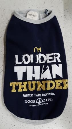 dogs-life-thunder