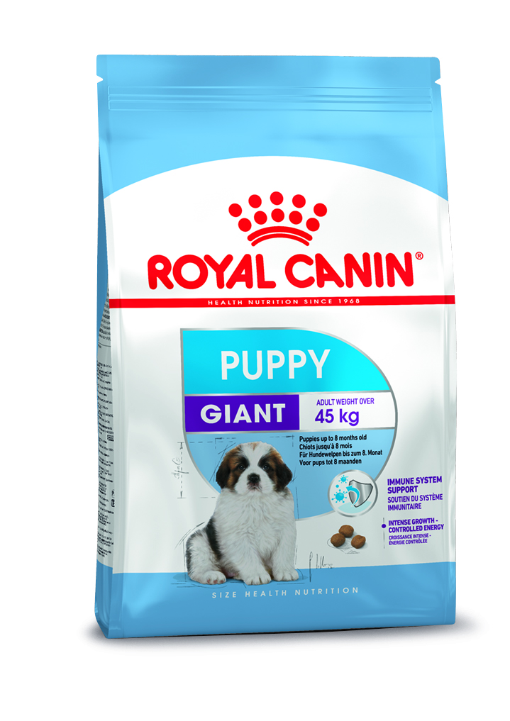 rc-giant-puppy-35kg