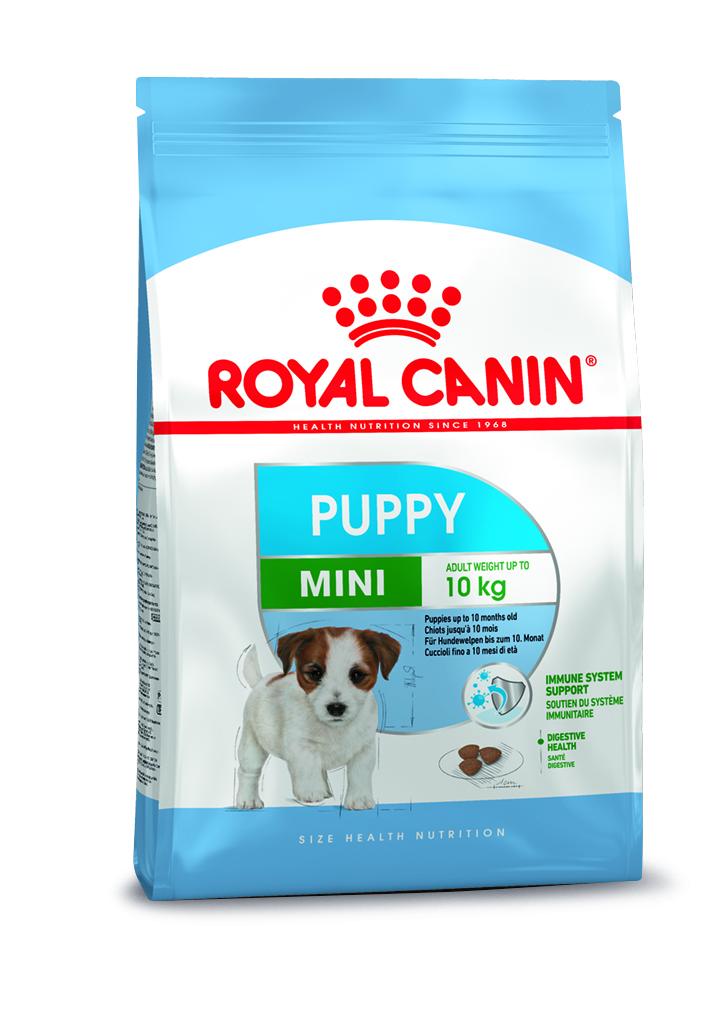 rc-mini-puppy-4kg