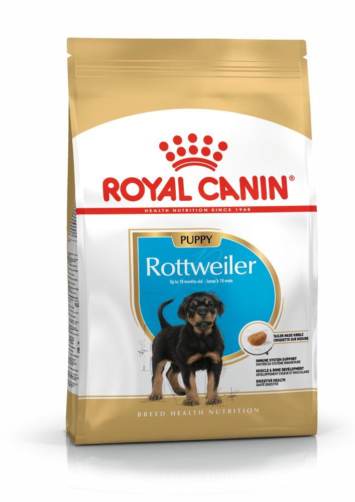 rc-rottweiler-puppy-12kg