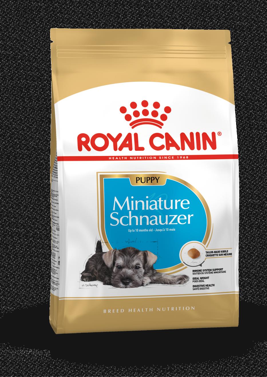 rc-schnauzer-puppy-15kg
