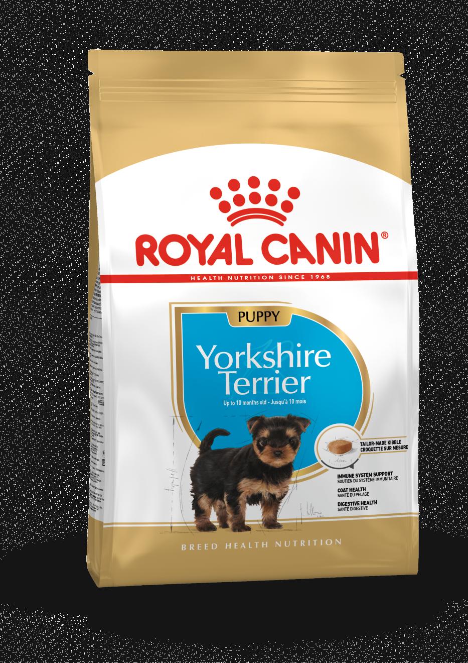 rc-yorkshire-terrier-puppy-15kg