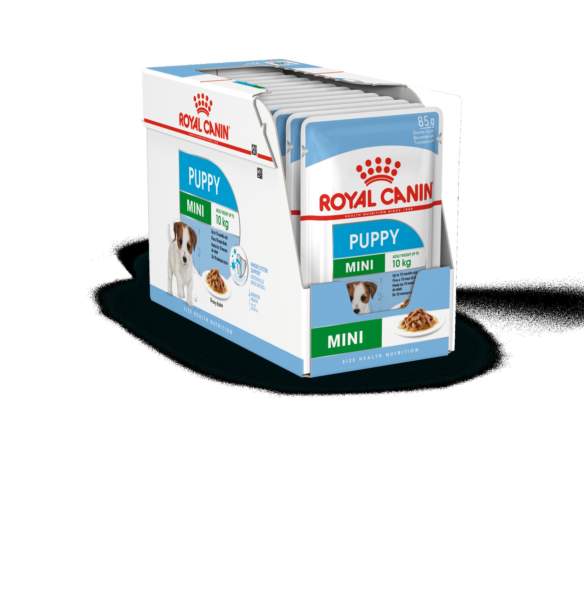 rc-mini-puppy-box