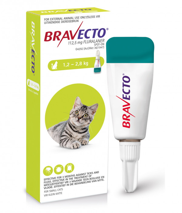 bravecto-cat-spot-on-12-to-28kg