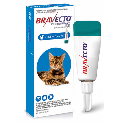 bravecto-cat-spot-on-28-to-625kg