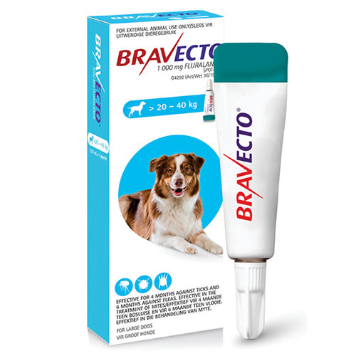 bravecto-spot-on-20-to-40kg